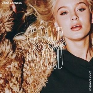 Zara Larsson - Follow You